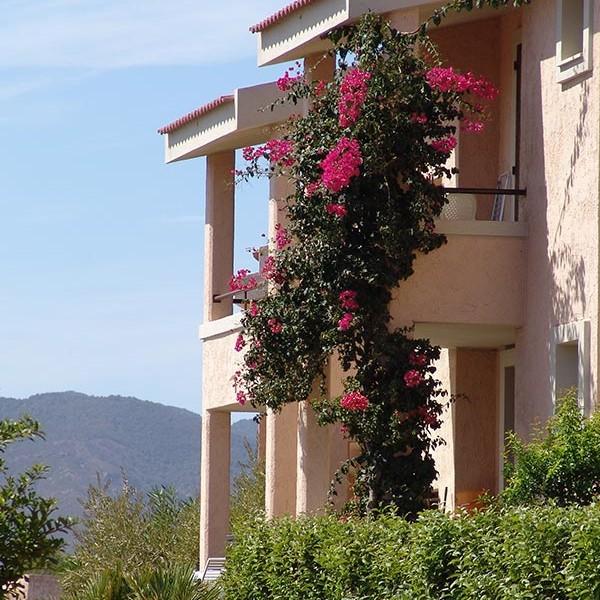 porto corallo - case vacanze esterno esempio