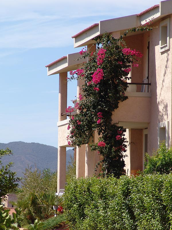 Porto Corallo: corallo vacanze accommodation example