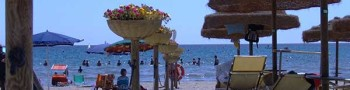 Servicio Playa