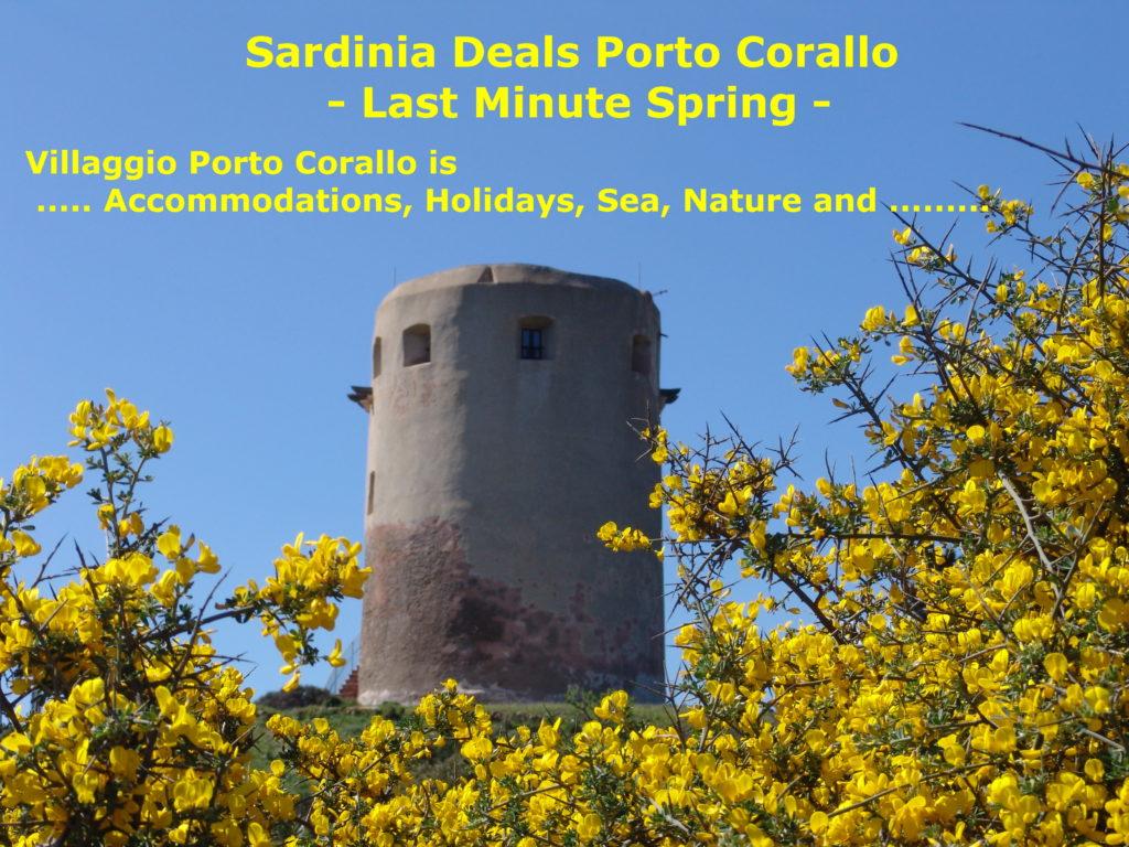 Sardinia Deals Porto Corallo