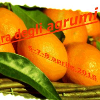 Sagra degli agrumi muravera