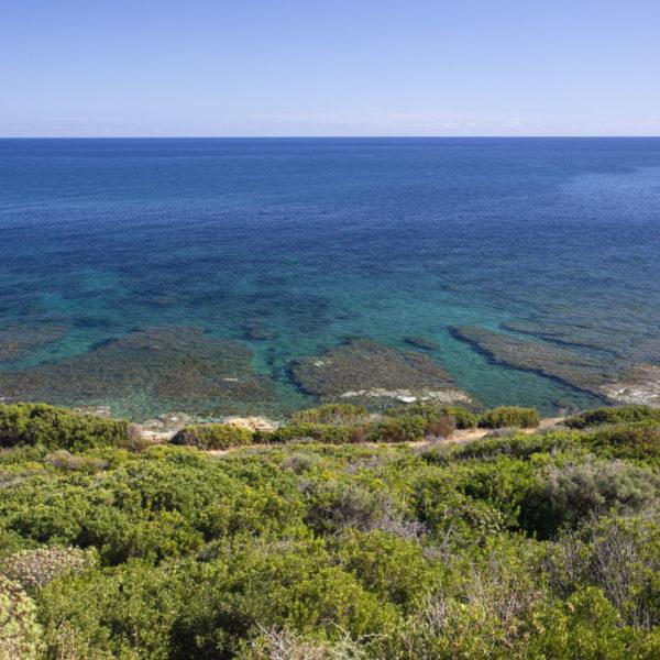 corallo vacanze vista mare